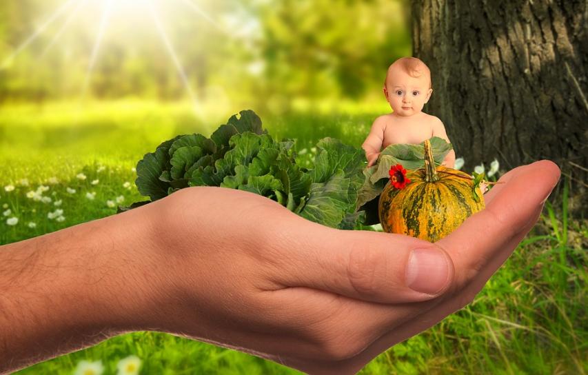 Pesan Pakar Diet Nutrisi Tentang Pemantauan Diet Anak DI Rumah