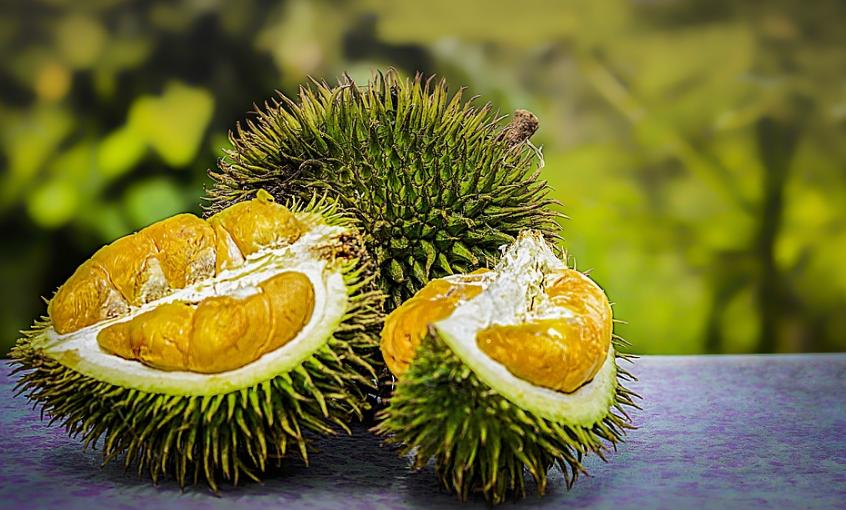 Tips Hilangkan Bau Durian Dalam Kereta